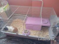 Klec pro morče/ králíka
