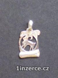 Znamení Kozoroh - stříbrný pří