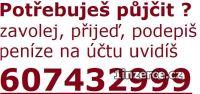 CHCEŠ  SI PŮJČIT 607432999